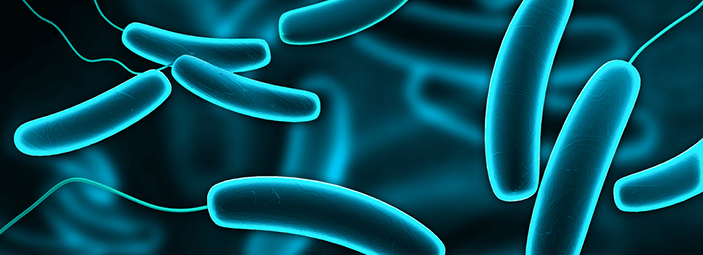 Viaggio nel pianeta microbiota