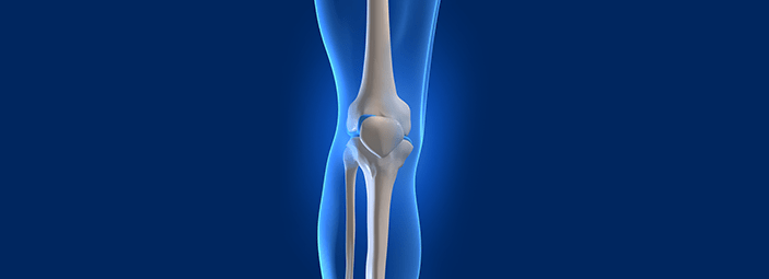 dettaglio dell'osso del femore