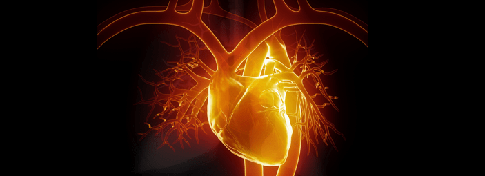 L'obesità può essere la causa per l'aumento di problemi al cuore