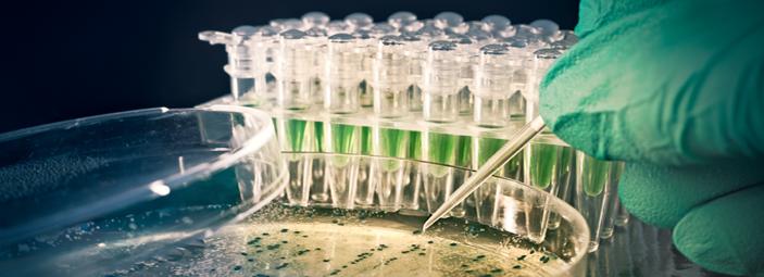 immagine simbolica di un'analisi di laboratorio